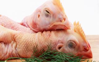 Cánh gà, chân gà, cổ gà... phần nào của gà có thể và không thể ăn?